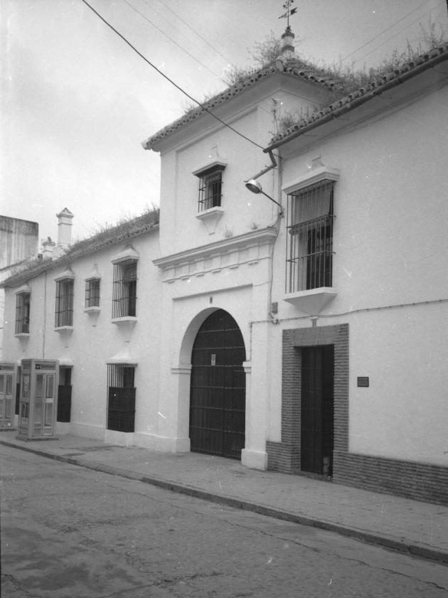 Palma8916