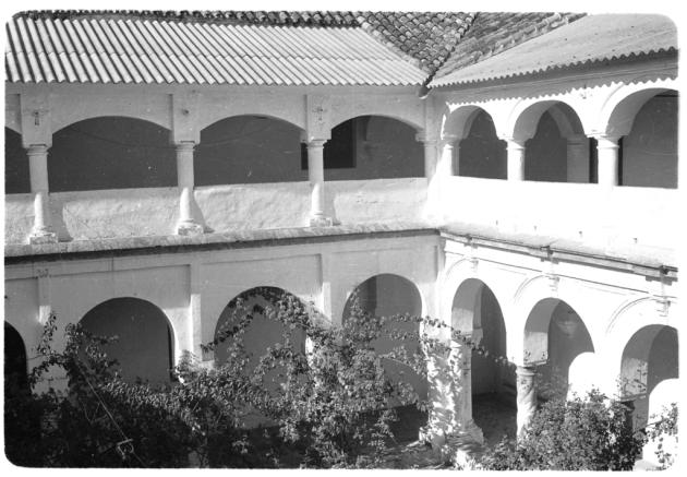 Palma6182